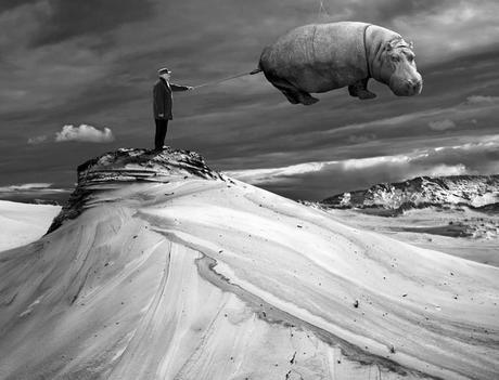 Photos Surrealistes Dariusz Klimczak L Gd7j48