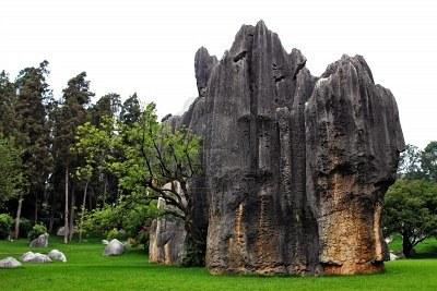 5961678 Un Elefante Tanto De Piedra En Piedra De Shilin Bosque De Kunming Yunnan China
