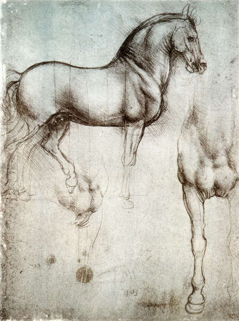 Leonardos Horse Wikipedia The Free Encyclopedia