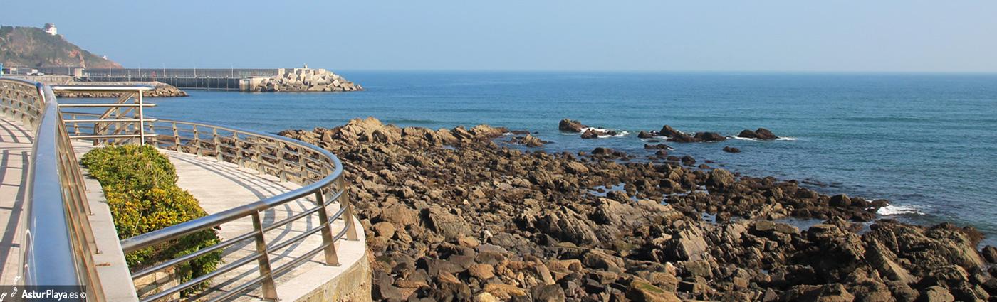 Conexal Cove Mainpic
