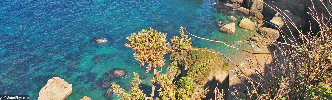 Cagonera Gijon Beach3
