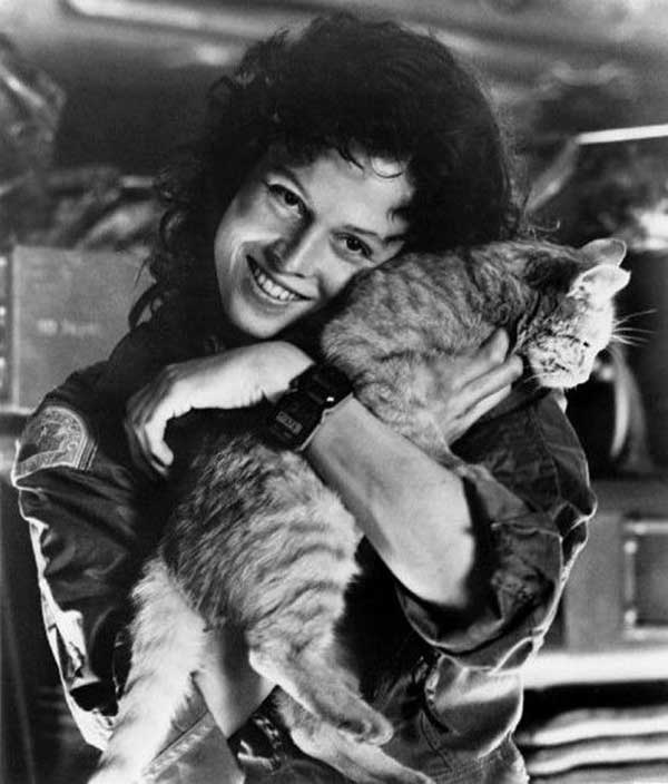 Sigourney Weaver And The Cat Jones On The Set Of Alien