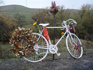 Bici Blanca1