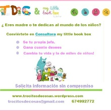 Consultora My Little Book Box