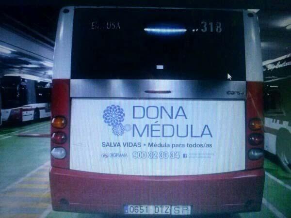 Autobuses solidarios de Gijón