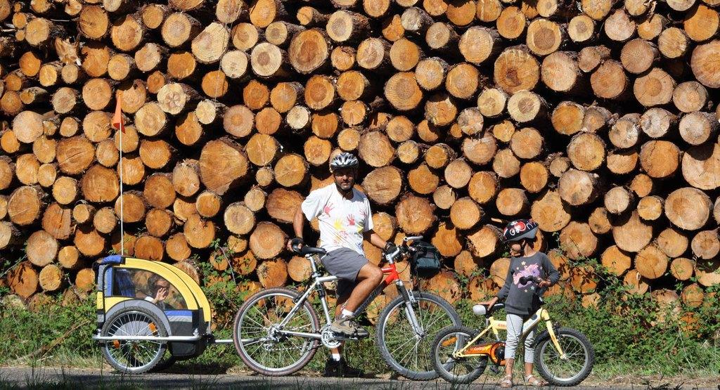 Paseo En Bici Por El Bosque De Contis