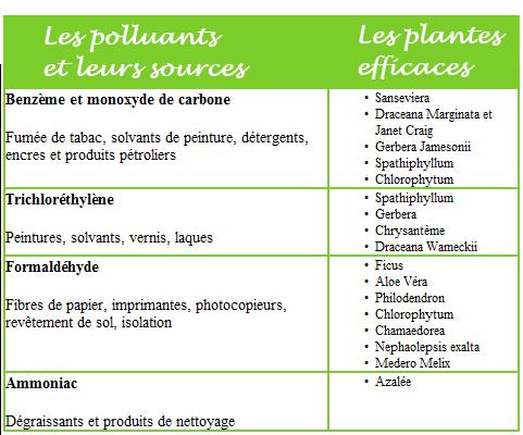 Liste Plantes Depoll