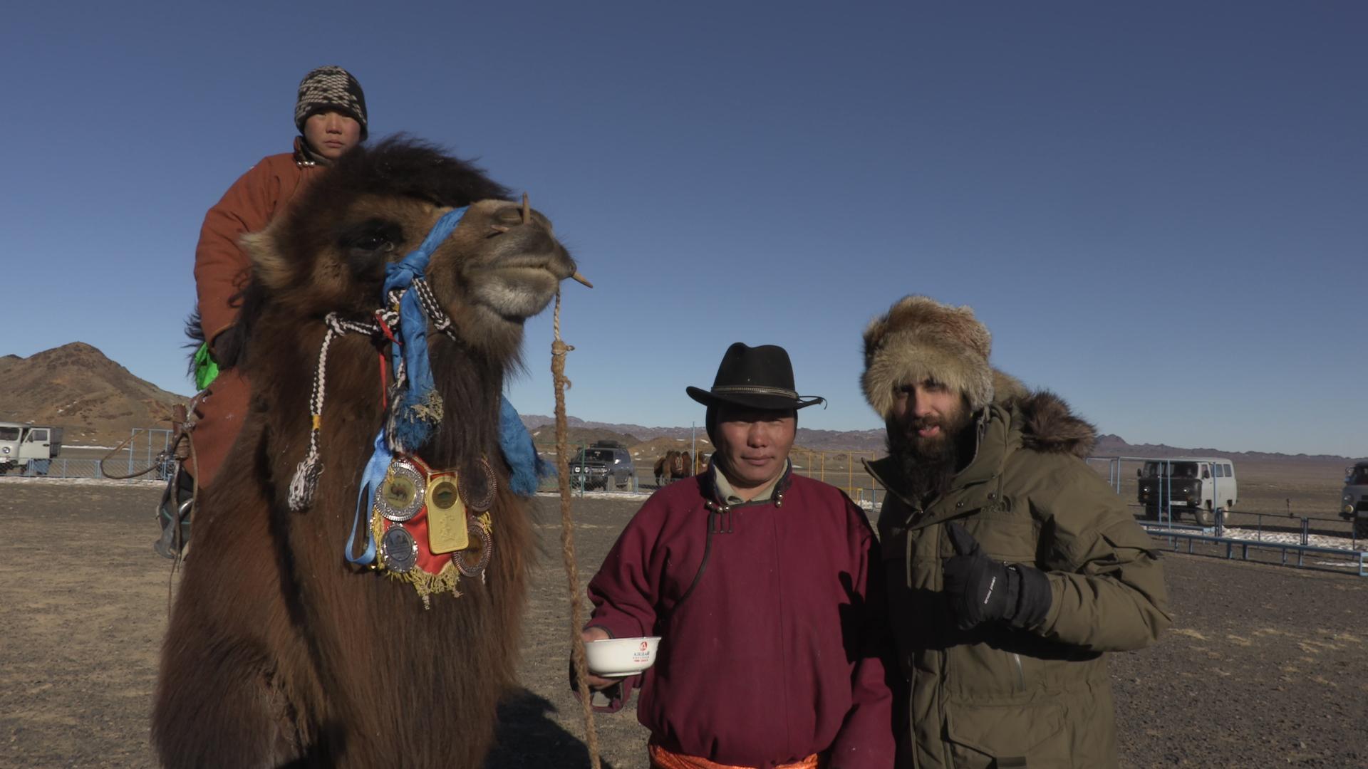 Carrera de camellos en el Gobi