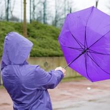 umbrellawiki