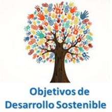 Los Objetivos de Desarrollo Sostenible.