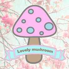 Lovely mushroom