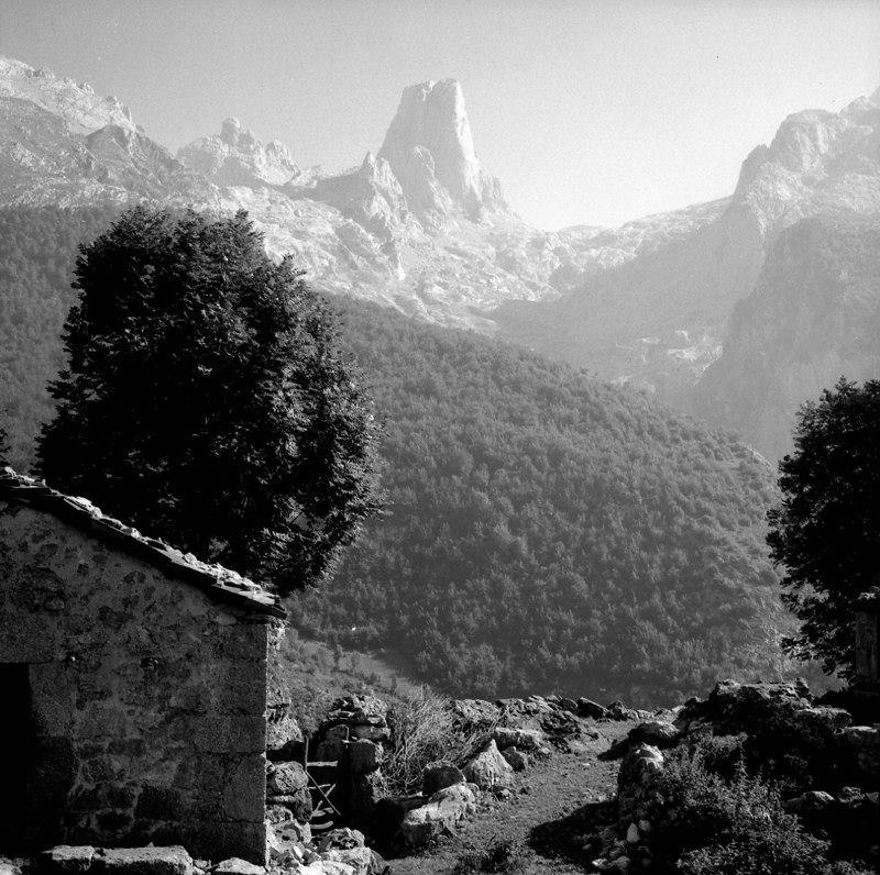 Naranjo de Bulnes en 1976 por Lueje