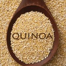 Quinoa: ses secrets en cuisine!