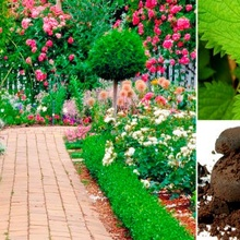 ¿Sabes cómo hacer fertilizantes naturale