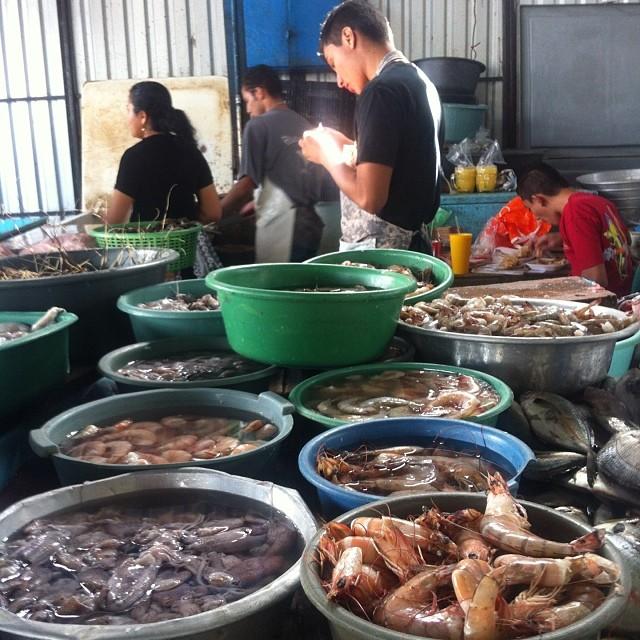 Fish Market Mercado De Pescado De Elsalvador Bis Una Pasadaaaa Esamundo