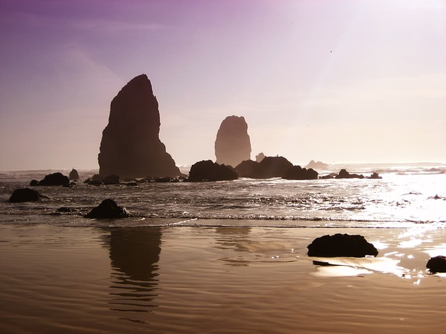 Playa de Oregon - tpsdave (pixabay)