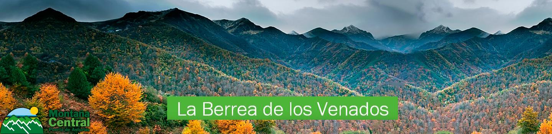Berrea Head
