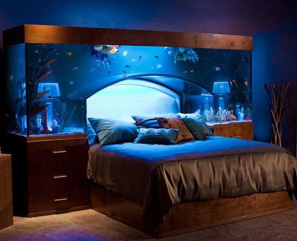 Headboard Ideas Fish Tank