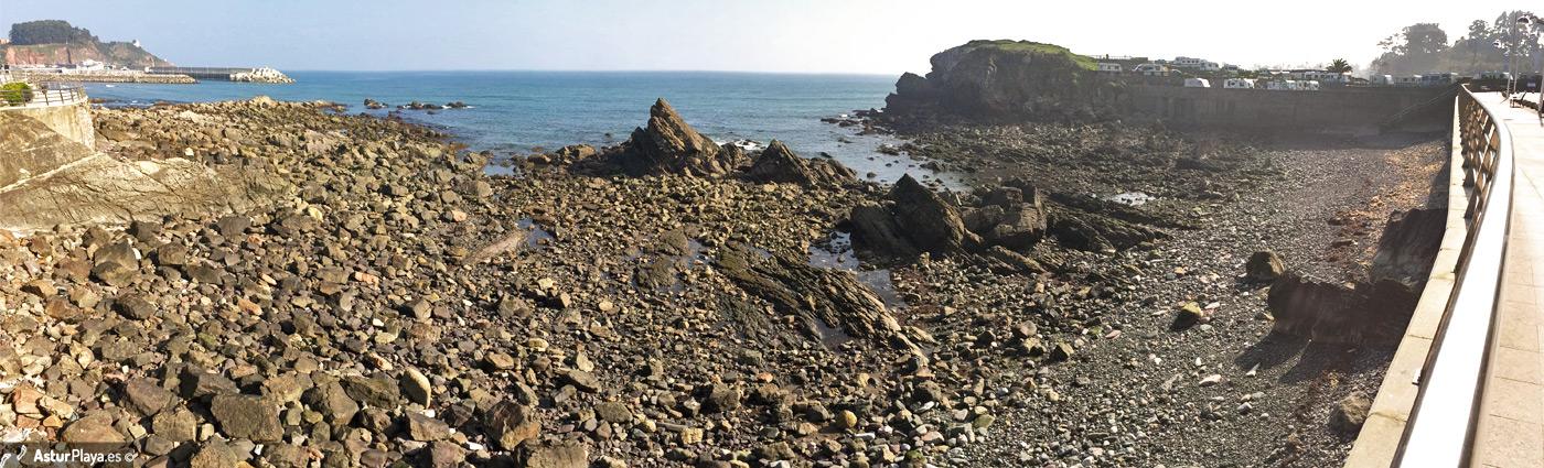 Conexal Cove1