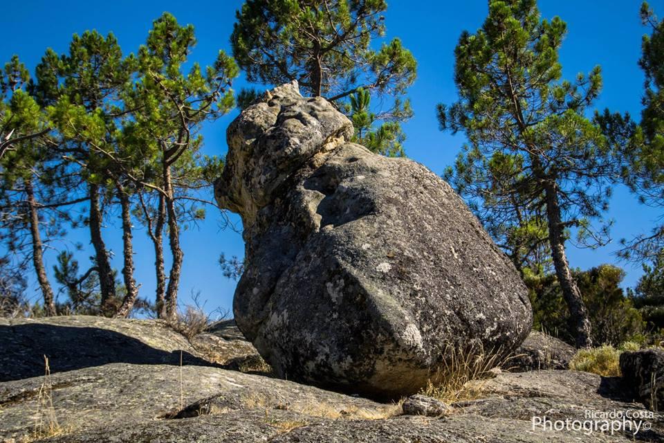 Bear's stone