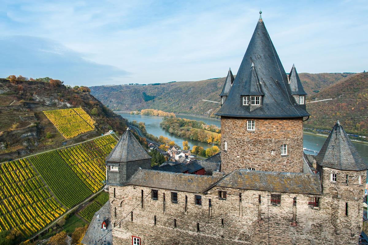 Mittelrhein, región vinícola