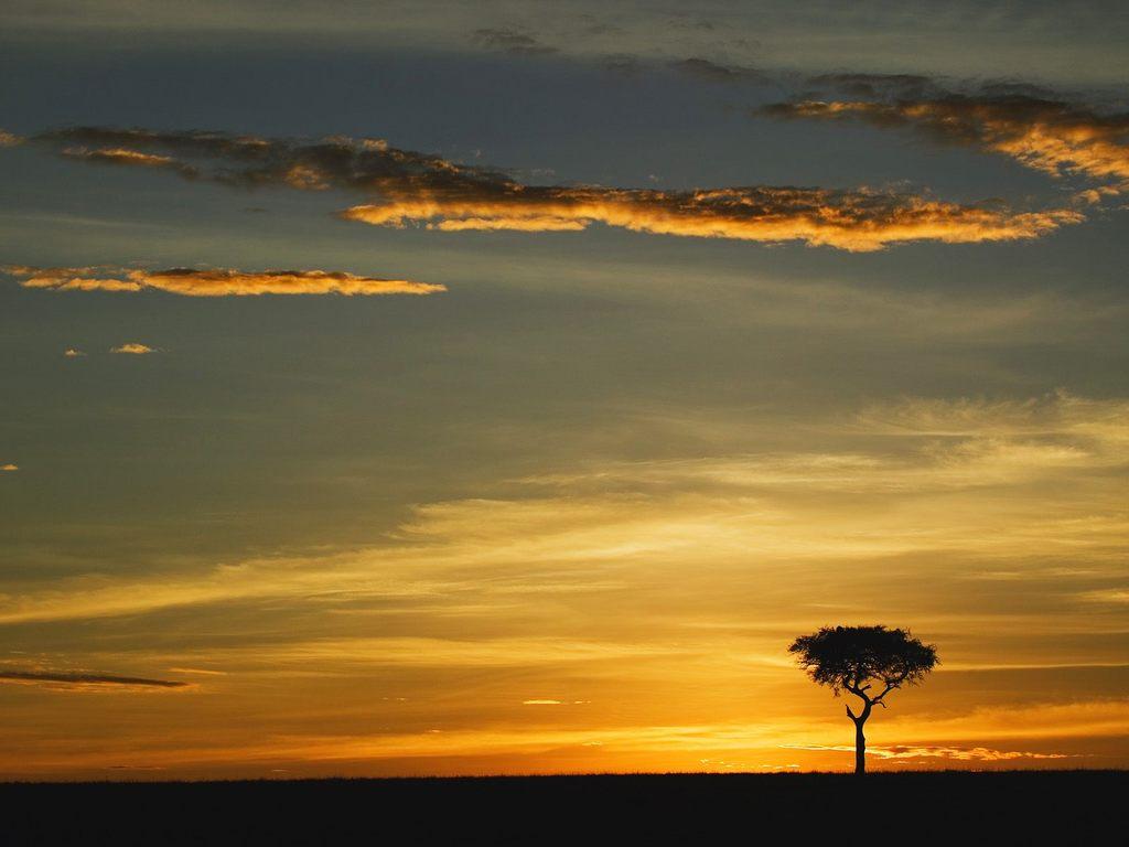 Paisajes De Africa