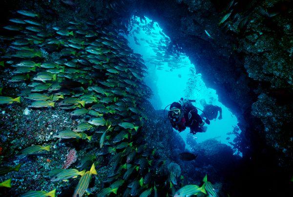 Cocos Island Costa Rica 40832 600x450 1