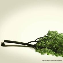 WWF (RSS)