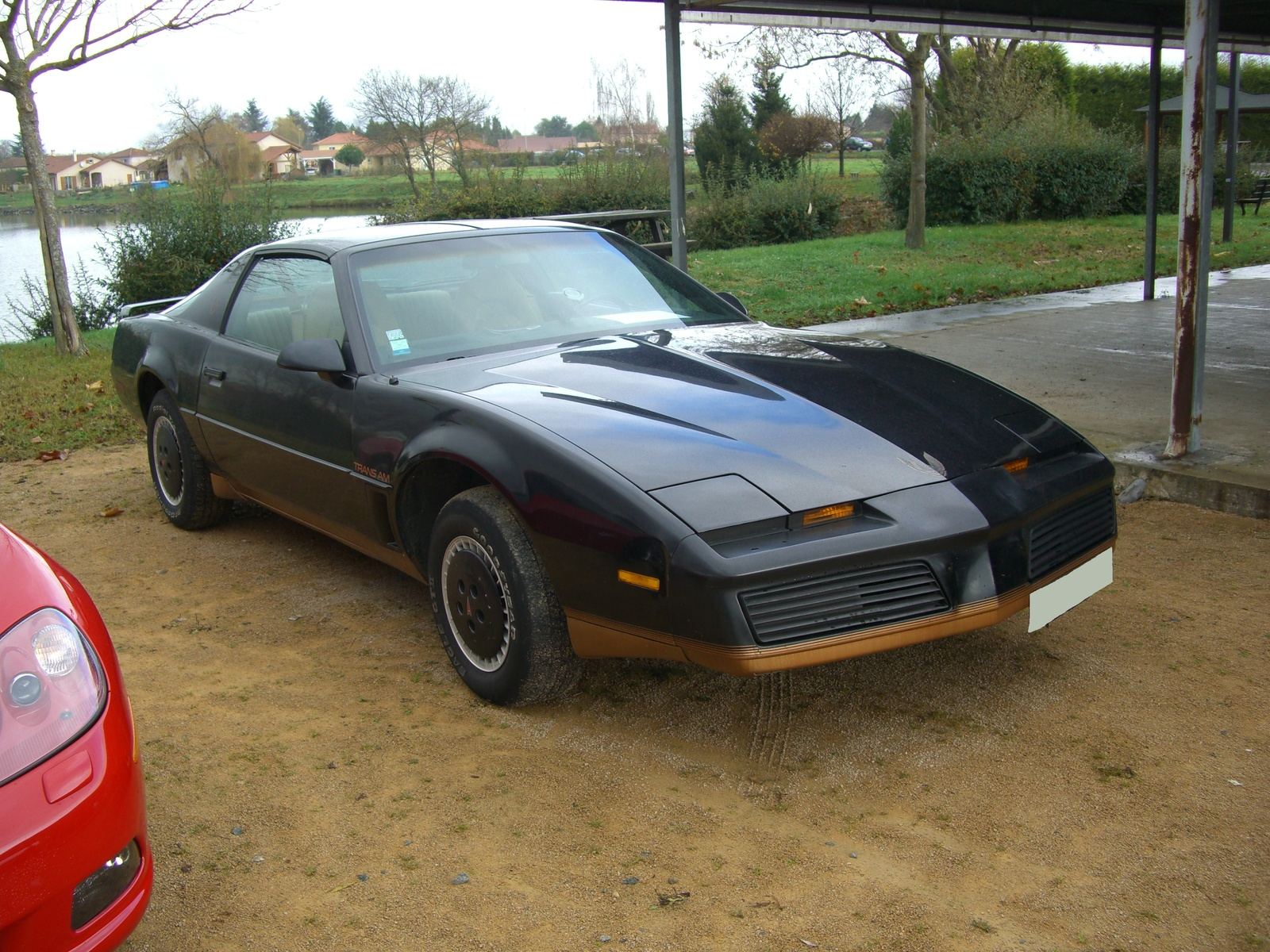 1982 Pontiac Firebird Trans-am