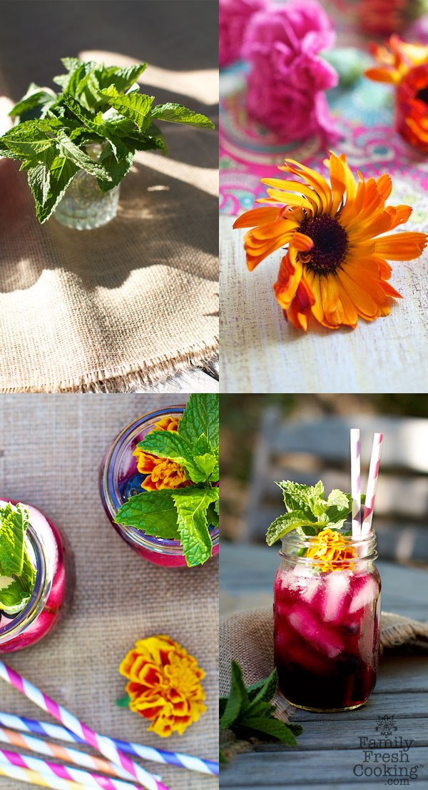 Blueberry Mint Agua Fresca Marla Meridith Collage