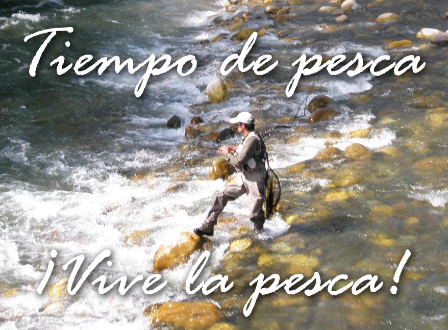 Vive Pesca 1