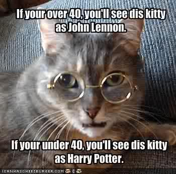 Lennon Potter Cat
