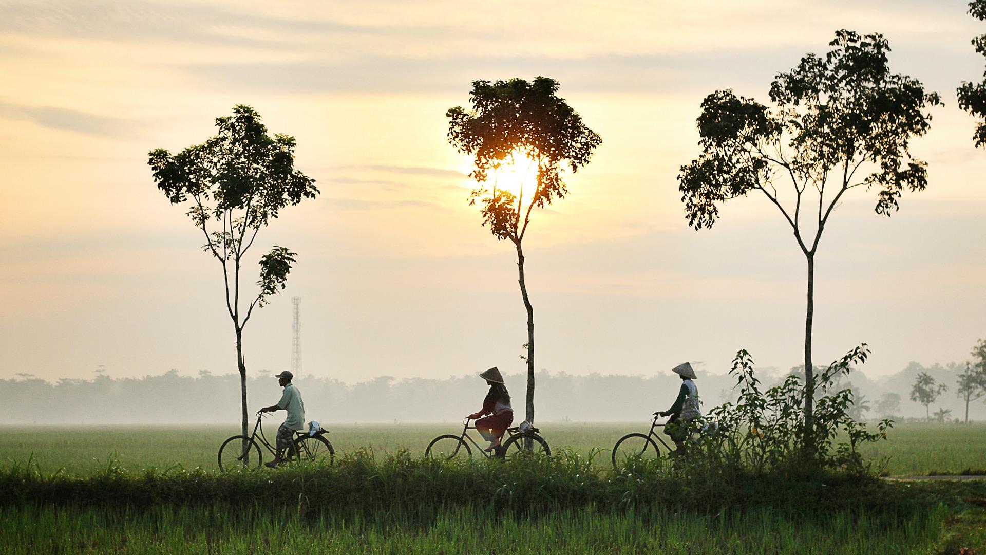 Bicycle Riding 947336 1920