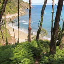 Playa de Oleiros - Cudillero