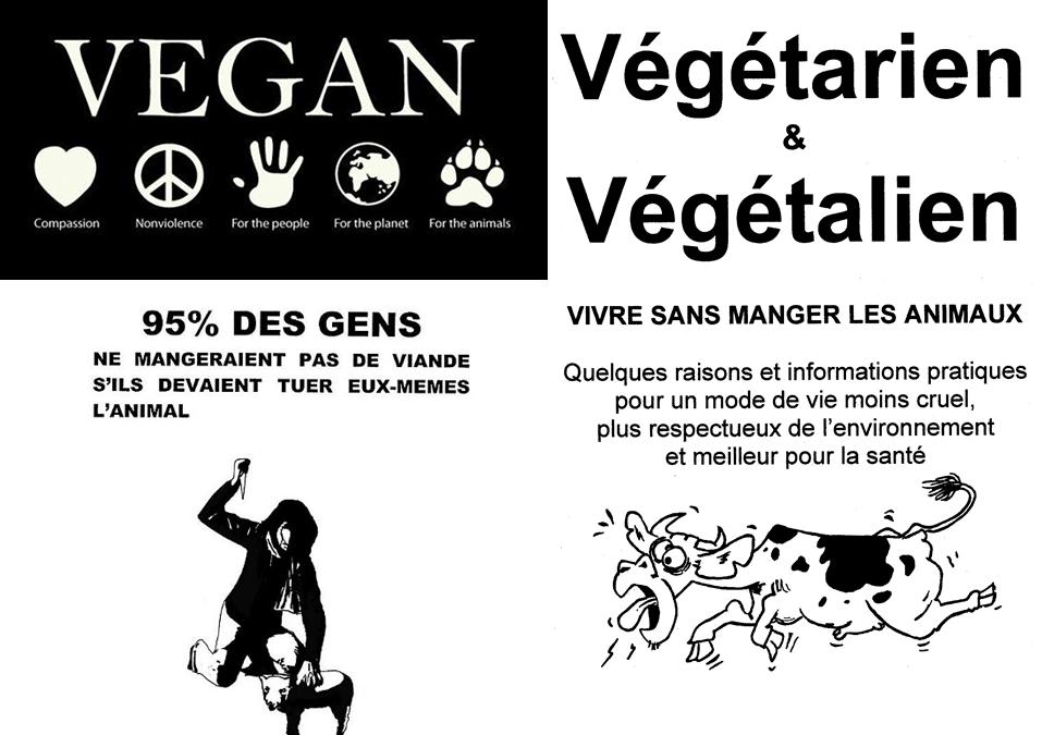 Being Vegan 957x675