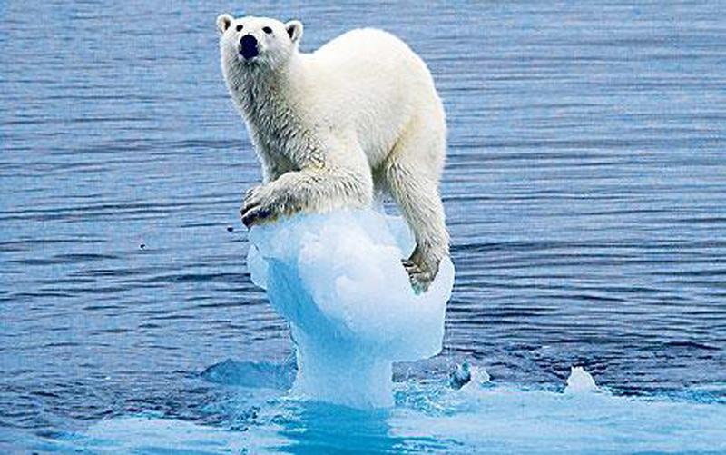 Todo Terreno Cambio Climatico