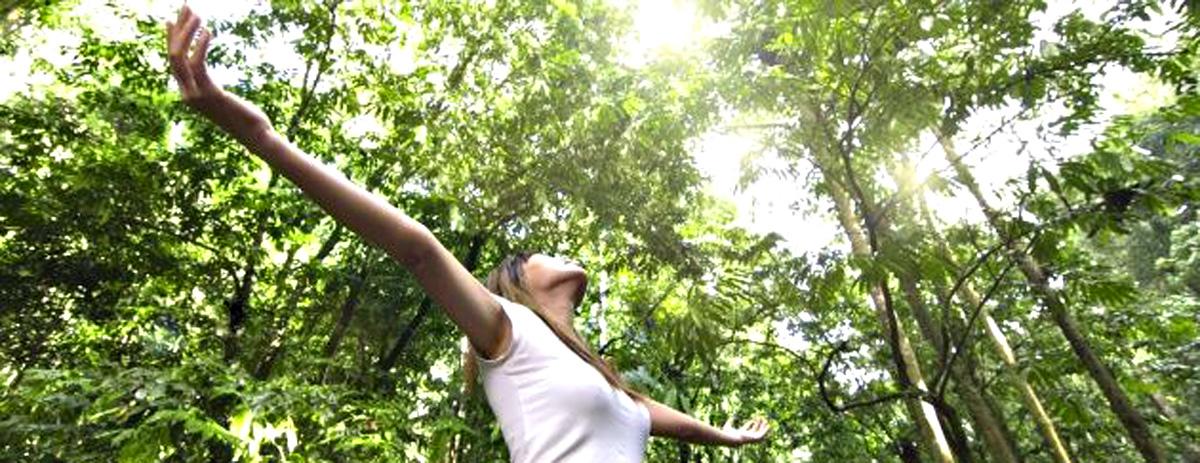 6 Habitos Para Llevar Una Vida Saludable