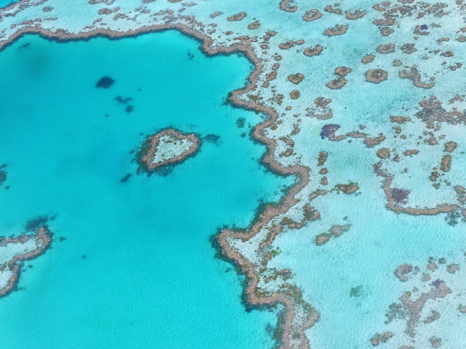 Heart Reef 1649218 1920