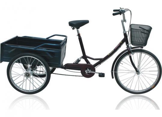 2588 Bicis Triciclo