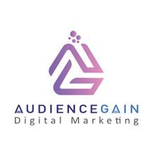 Company Audiencegain