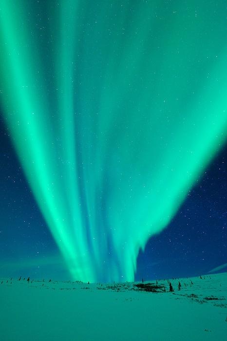 Aurora Boreal 17