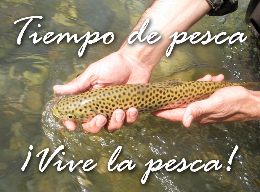 Vive Pesca 3