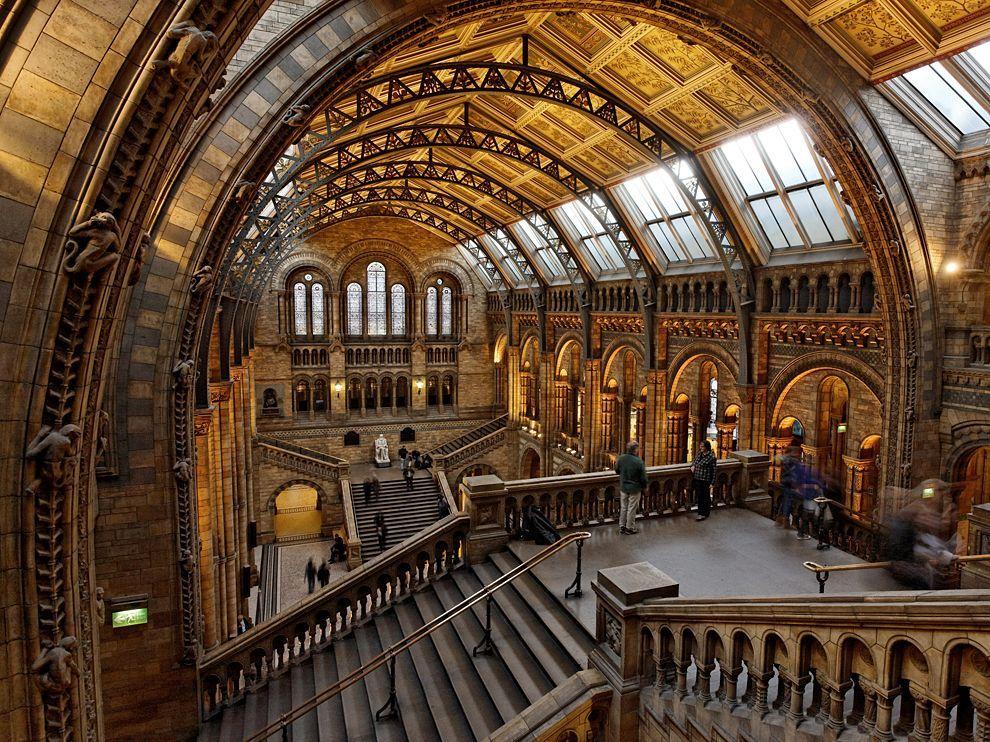 Natural History Museum London 61644 990x742