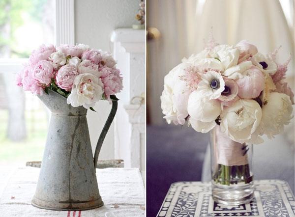 Photos De Bouquets De Pivoines Roses Et Blanches
