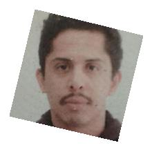 Carlosgamboa Mini