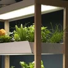 Best Indoor Smart Garden-Best Automatic