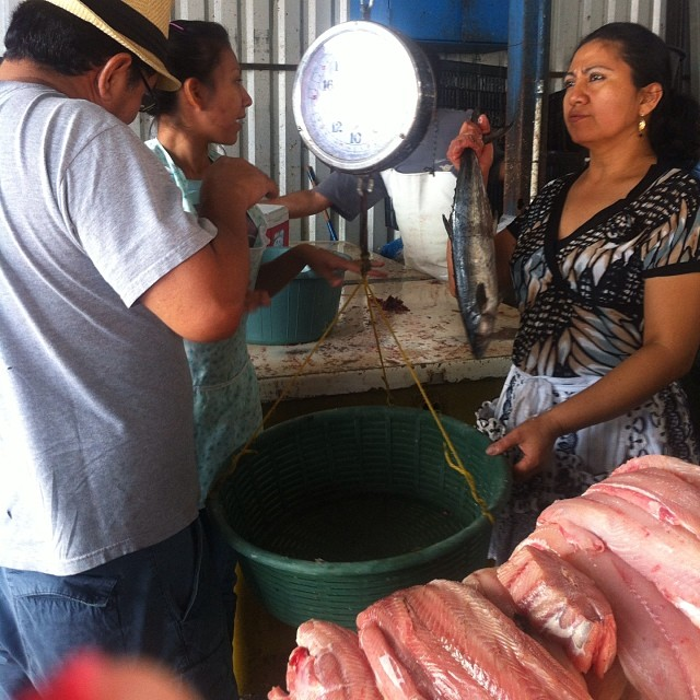 Fish Market Elsalvador Bis