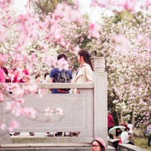 6 Great Things About Spring And Dating