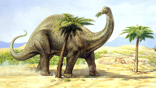 5. Brontosaurio