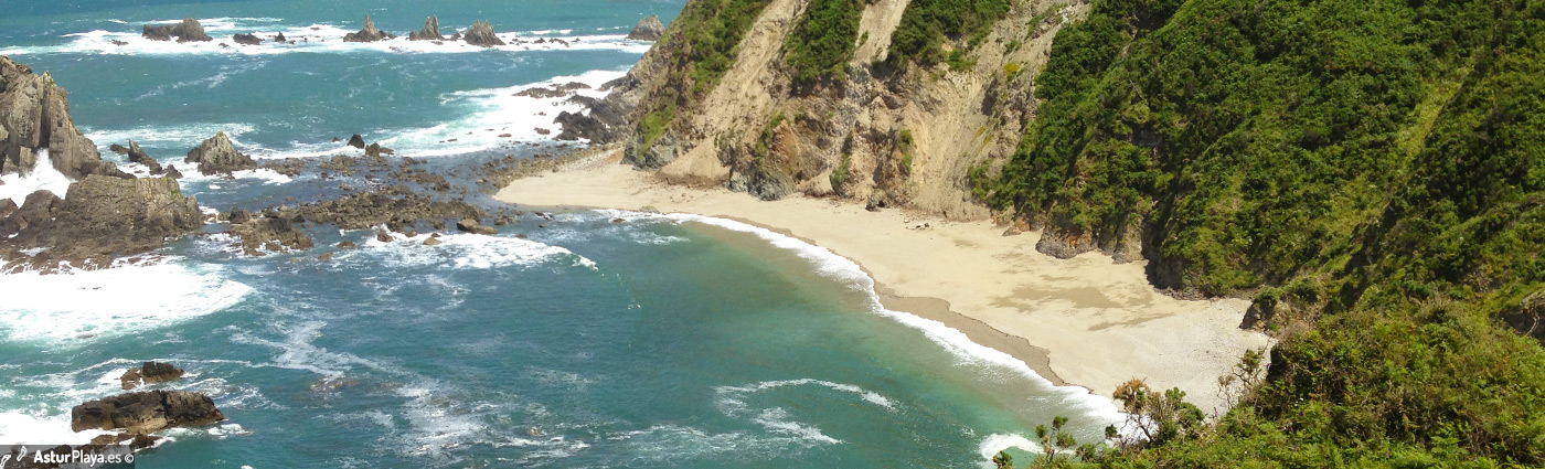 Pumarin Beach Cudillero1